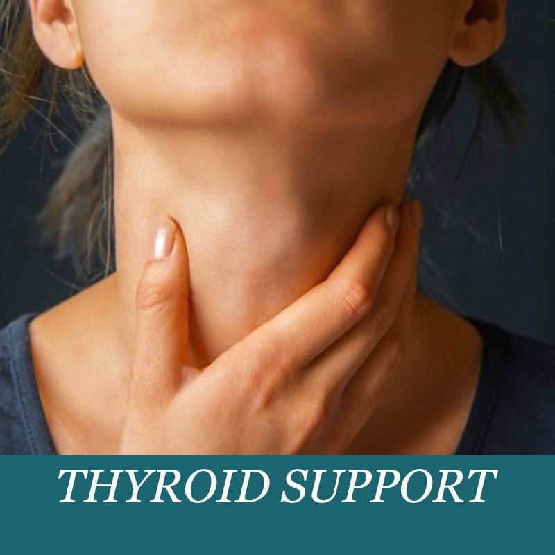thyroidSupport